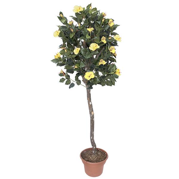 Plante artificielle hibiscus fleurs jaunes 6 39 d cors - Plante a fleur jaune 6 lettres ...