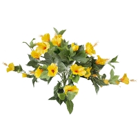 Yellow hibiscus bush, 2 years warranty against discoloration