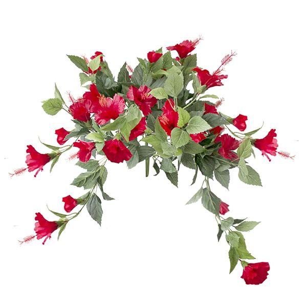 Hibiscus rouge garanti 2 ans contre la d coloration for Hibiscus entretien exterieur