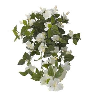 Hibiscus suspendu ext rieur blanc d cors v ronneau for Hibiscus entretien exterieur