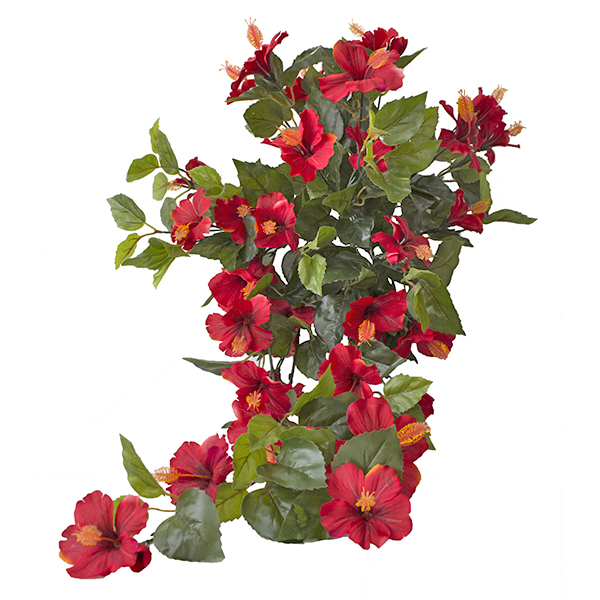 Hibiscus suspendu ext rieur rouge d cors v ronneau for Plante exterieur fleur rouge