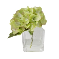 Hydrangée verte dans vase de verre 5,5''