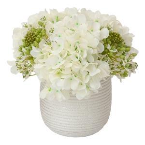 Hydrangées en vase