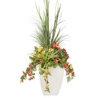 Jardinière d'hibiscus jaunes et oranges en pot