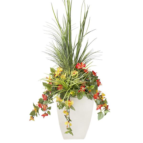 Jardini re d 39 hibiscus jaunes et oranges en pot d cors - Hibiscus exterieur en pot ...
