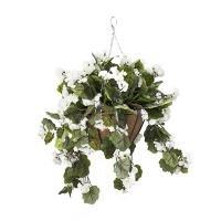 Jardinière suspendue, géraniums blancs 18 x 18''