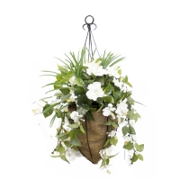 White hibiscus hanging basket