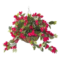 Outdoor red bougainvillea hanging basket 18 x 18''