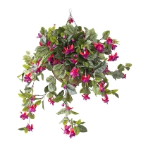 Outdoor bleeding heart hanging basket 18 x 18''
