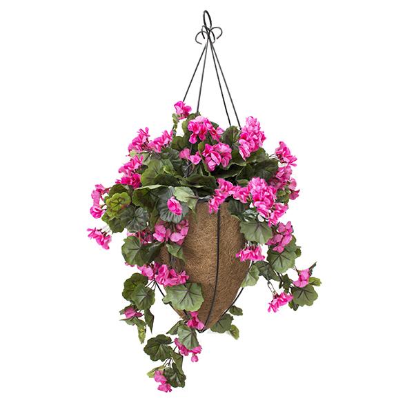 Jardini re suspendue g ranium fushia d cors v ronneau for Plante fushia exterieur