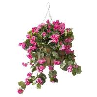 Jardinière suspendue, géraniums roses 18 x 18''