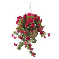 Jardinière suspendue, géraniums rouges 18 x 18''