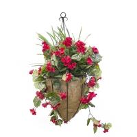 Jardinière suspendue géranium rouge