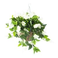 White outdoor hibiscus hanging basket 18 x 18'', 2 years wa