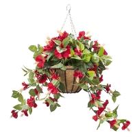 Hibiscus hanging basket 18''