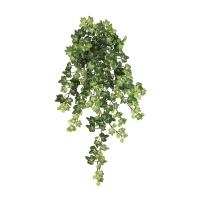 22,5'' Lace ivy hanging bush