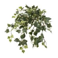 Plante Artificielle, Lierre pâle retombant 19''