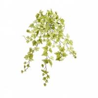Ivy hanging bush 28''
