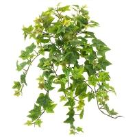 Cascading Sage Ivy, 21''