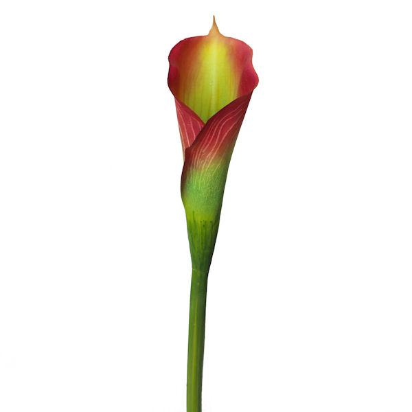 Fleur artificielle lys calla verte bourgogne 26 for Soldes plantes vertes