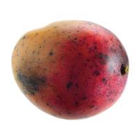 Plastic Mango, 5''