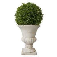Mini myrtle ball in urn 17''