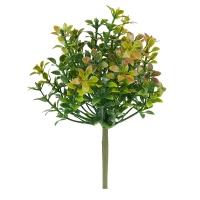 Tige de thym vert et bourgogne, 6''