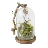 Bell jar with flowers & moss
