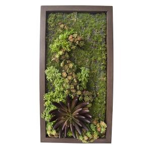 Mur végétal  10 x 18''