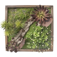 Vegetal wall with metal decoration 15 x 15''