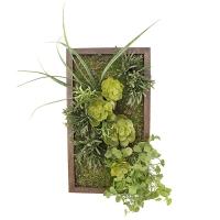 Mur végétal passe-partout, 18 x 10''