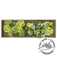 Artificial succulent green wall, 12 x 36''