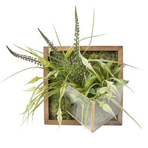 Mur végétal, vase incrusté, 15 x 15''.