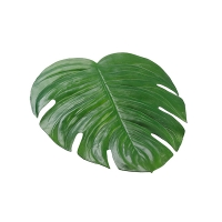 Monstera leaf placemat 18 x 16,5''
