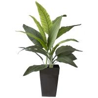 51'' outdoor bird of paradise planter
