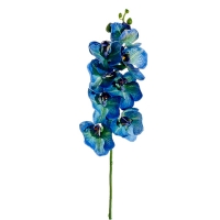 Blue phalaenopsis spray 26''