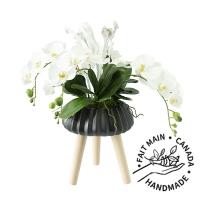Orchidées dans un pot sur pattes noir