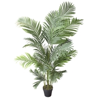 5,5' Outdoor areca palm, 2 years warranty against discolorat