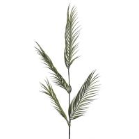 Palmier areca vert 47''