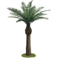 Palmier extérieur 12.5', garantie 2 ans