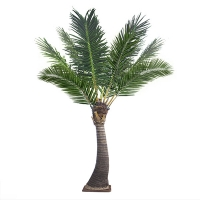 13' Outdoor palm tree, 2 years warranty