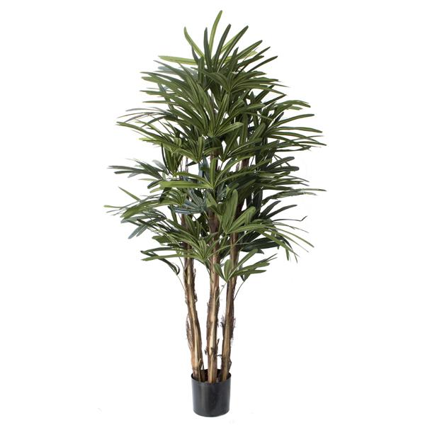 Arbre artificiel raphis 7 39 d cors v ronneau for Soldes plantes vertes