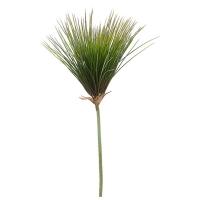 Tige de papyrus vert 54''