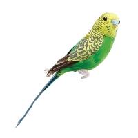 Green Parakeet, 7''