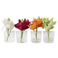 Petit pot d'orchidée 7'', 4 ass. Prix unitaire