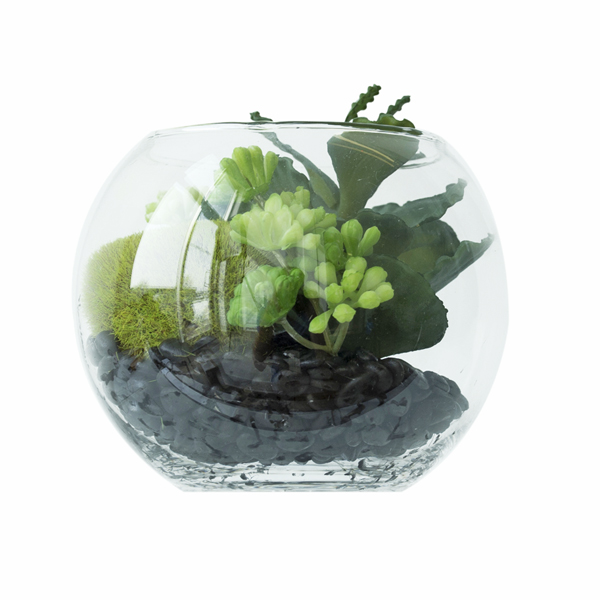 Succulents glass pot 4 5 39 39 veronneau plants and decor for Pot en verre deco