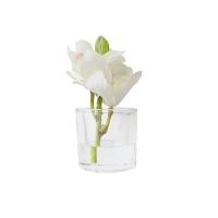 Petit vase d'orchidée blanche 7''