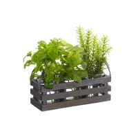 Petite boite en bois de fines herbes 10''