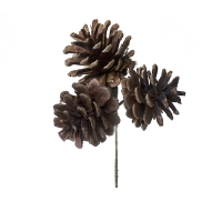 Lacquered triple pinecone pick