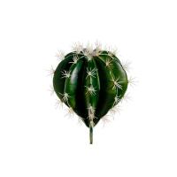 Cactus pick 10''